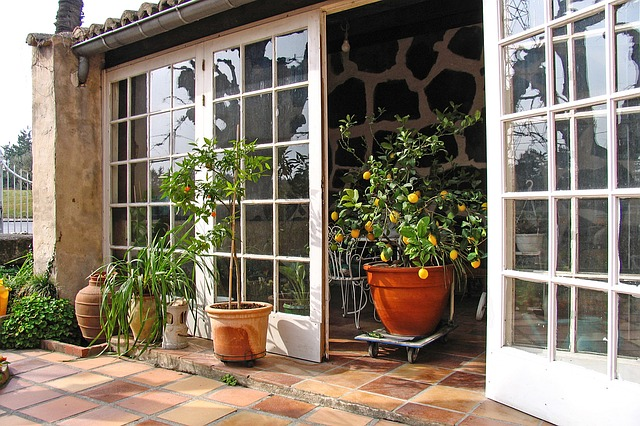 Kaltwintergarten zum Überwintern der Pflanzen